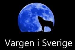 Vargen i Sverige
